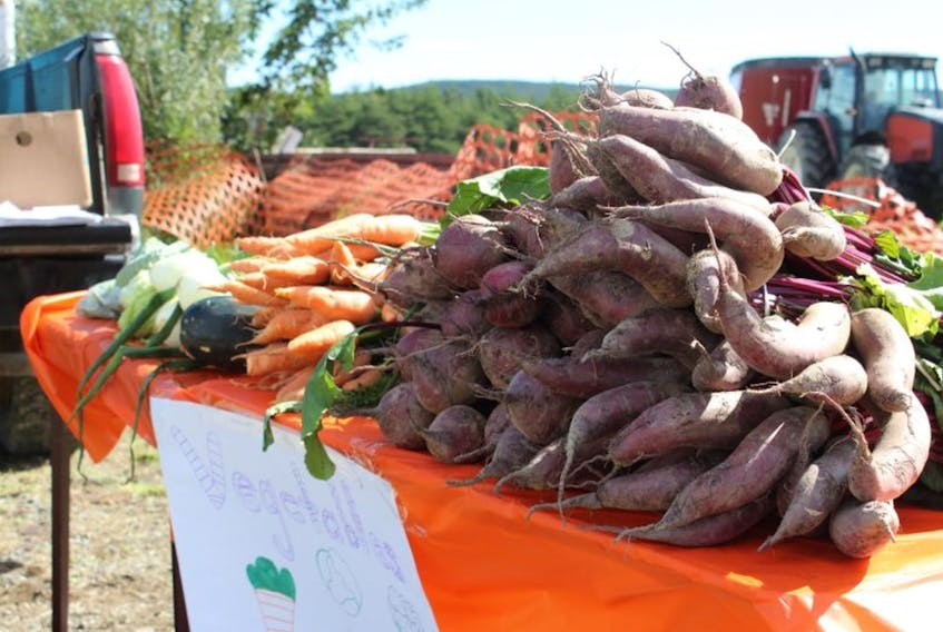 Beets, carrots and onions are three vegetables that are easy to grow in Newfoundland and Labrador. Food First NL is offering grants to help people be self-sustaining by growing their own crops.