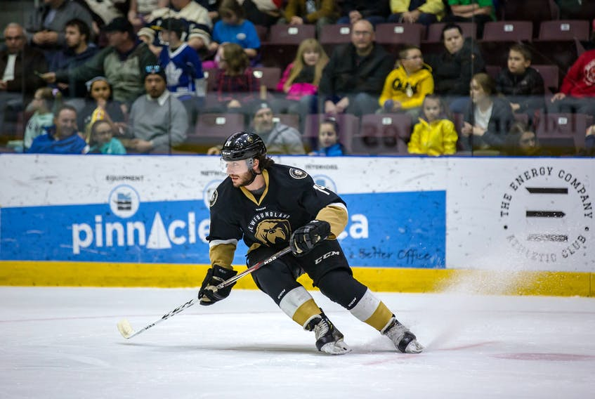 After one season at Boston University, Newfoundland Growlers forward J.J. Piccinich joined the OHL's London Knights and won a Memorial Cup. The next season, he was named Knights' captain.