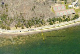 This yellow line depicts where the floating dock system will be constructed off Victoria Park in Charlottetown. It will be located between the playground and the tennis courts.