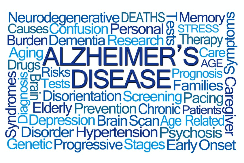 When it comes to preventing Alzheimer's disease, researchers agree there are a number of danger factors to watch out for. Submitted image