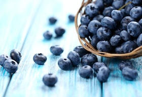 Fresh blueberries like these can be frozen and then used in a delicious variety of recipes, including Blueberry Coffee Cake.