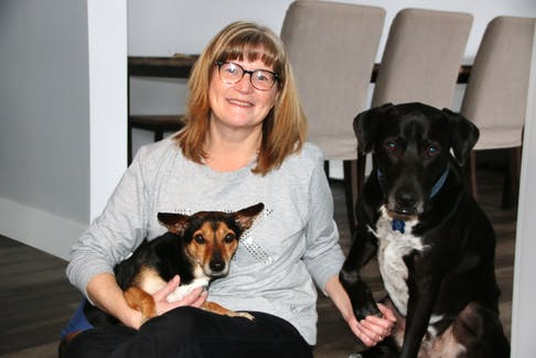 Chip relaxes with his foster mum, Karen Carroll, and her dog Henry. Chip was shot and is unable to walk, but fundraising efforts are underway to help him get a set of wheels for his hind end. LYNN CURWIN PHOTO.