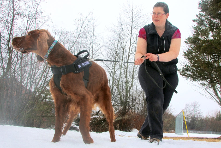 Barb Deg trains dogs, including her Irish setter, Target, in sporting detection. She teaches classes in the popular activity at Little Moe's K9 Academy.