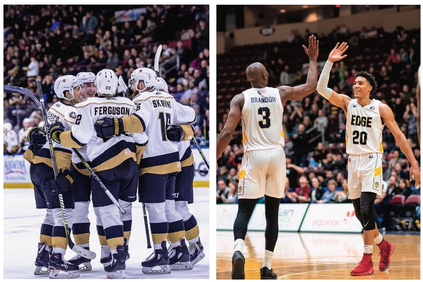 Only the Newfoundland Growlers will return to Mile One Centre this fall and winter. - Newfoundland Growlers photo/Jeff Parsons; St. John's Edge photo/Ryan MacLellan