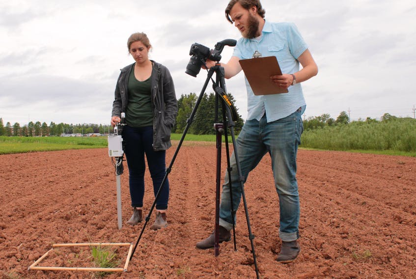 Weed Scientist Andrew McKenzie-Gopsill demonstrates a digital camera, sensor and controller mechanism that can be mounted on a sprayer and tractor to read weed locations. SUBMITTED PHOTO