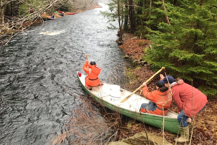 Venturing out during the annual canoe rally that takes place in the Municipality of Clare. This isn't an organized event but rather a tradition that hundreds turn out for every year. CONTRIBUTED