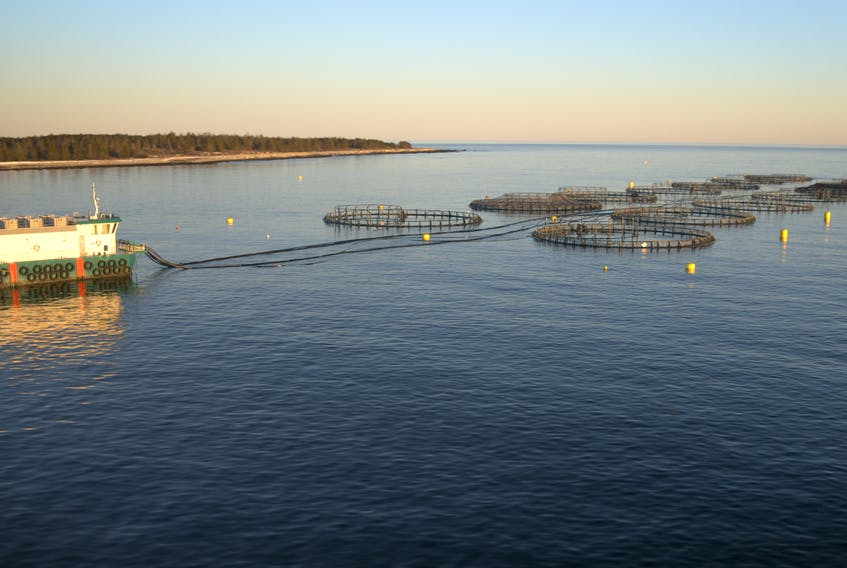 Coffin Island, Liverpool Bay. Kelly Cove Salmon Ltd. photo.
