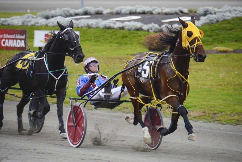 Silverhill Buddy with Jason Hughes in the bike had the early lead, but finished fourth in Saturday's Race 10 at Red Shores at the Charlottetown Driving Park.