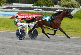 Gilles Barrieau drives Tobins Rebel to the finish line Saturday at Red Shores at the Charlottetown Driving Park in the colt division of the P.E.I. Colt Stakes.