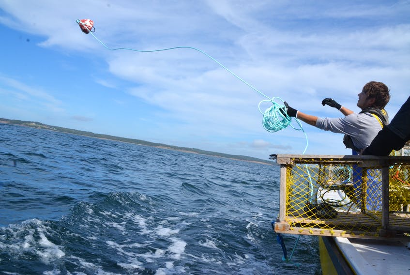 Avery Basque of the Potlotek First Nation sets a trap in St.Peter's Bay as part of the community's moderate livelihood fishery.(AARON BESWICK PHOTO) 's