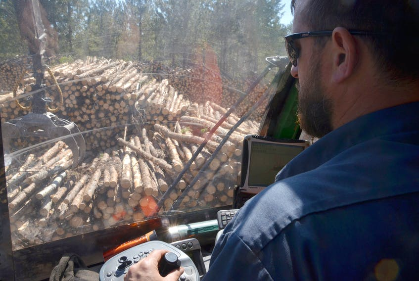 Jack pine logs are moved to roadside for pickup in Cumberland County, Nova Scotia.