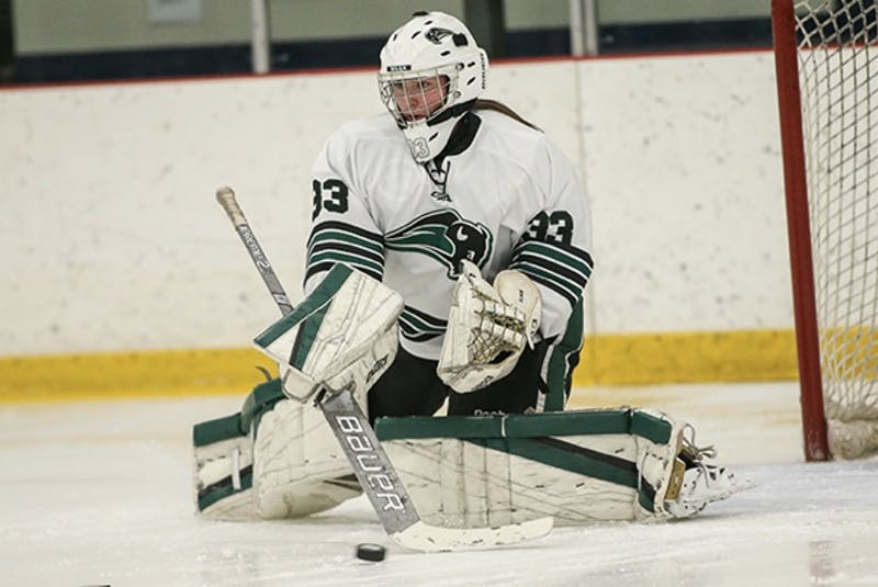 Julia Carroll of Albert Bridge is shown in the crease for Nichols College Bison in her freshman year during the 2019-20 campaign. The 19-year-old did return to Dudley, Mass., this year for school, however, the hockey season has been delayed until at least Feb. 1. PHOTO SUBMITTED - Jeremy  Fraser