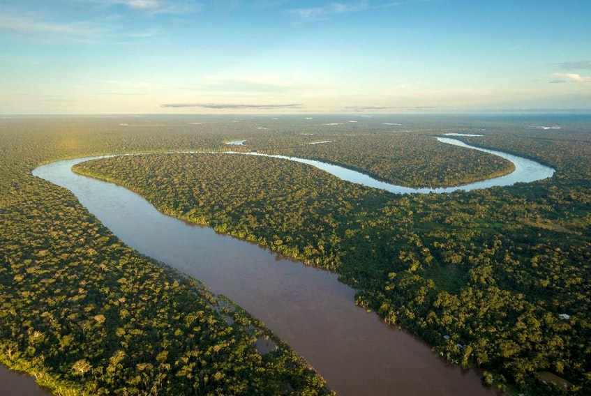 Some parts of the rainforest that were deforested for trade belong to indigenous communities, which are used for hunting, fishing, and fruit gathering.