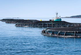 In Atlantic Canada, open-net pens are used in the salmon aquaculture industry.