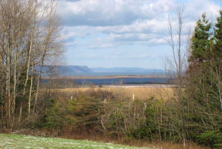 Blomidon from Avonport Mountain after some November flurries.