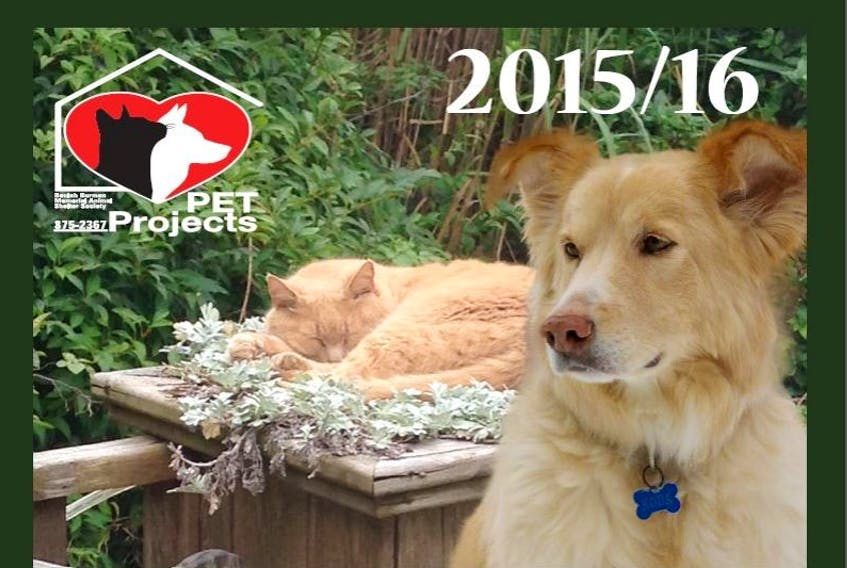 PET projects is once again looking for photo submissions of cats and dogs for their annual calendar.