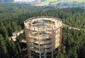 An example of an existing tree walk tower design. Completion of the tree walk being built in Ingonish is expected to be the summer 2021. FILE