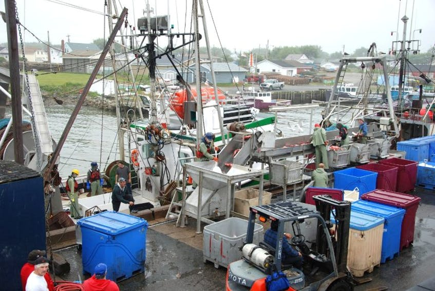 Louisbourg Seafoods, which employs 350-400 people, is one of two Cape Breton companies that will be represented at Seafood Expo Asia, a trade show attracting more than 8,800 professionals in the seafood sector from more than 65 countries to Hong Kong. The expo began Tuesday and continues until Thursday.