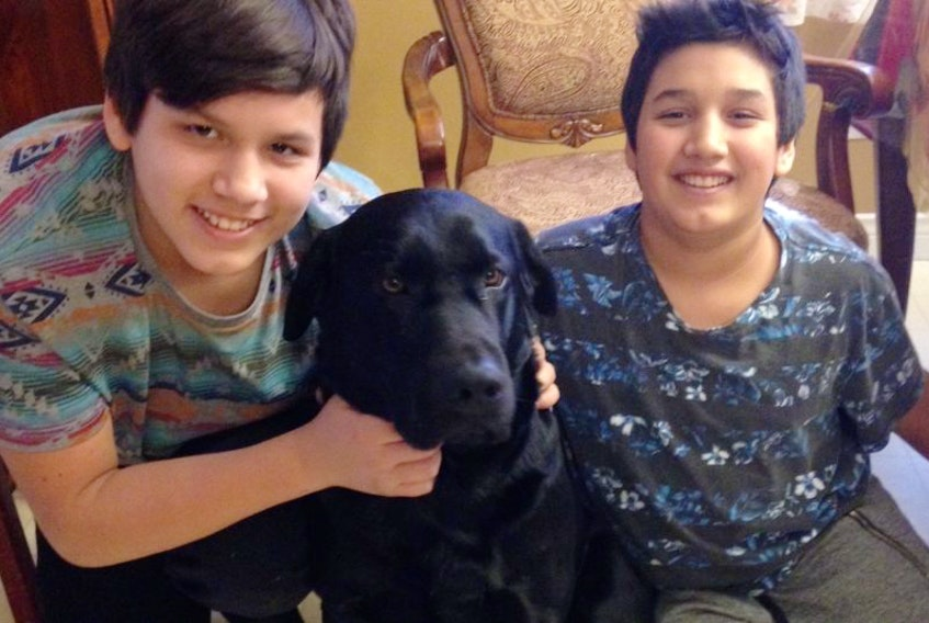 From left, Larry Stevens, 13, left, and his brother Dean Stevens, 12, are shown with T-Bone, the three-year-old Labrador retriever who nearly drowned on Monday morning.