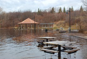 Some effects of climate change, such as an increasing number of floods, tend to be more visible than the social and economic effects, which Curtis says will have greater ramifications for Indigenous, remote and rural residents of the province. Pictured is flooding along the Exploits River in 2018. -SALTWIRE NETWORK FILE PHOTO