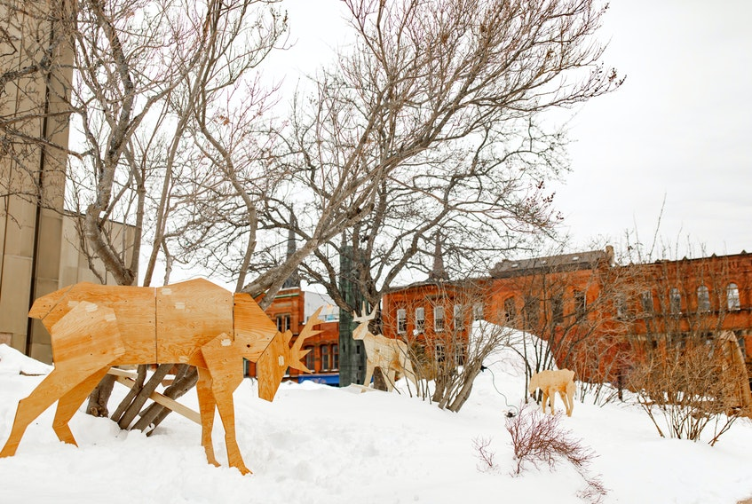 Wooden art installations, like these caribou outside the Confederation Centre of the Arts, are part of a new month-long festival, Ice City, in Charlottetown.
