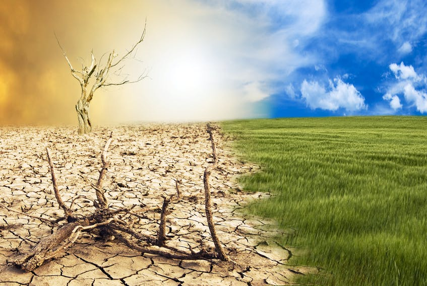 A conceptual scene — the metamorphosis of Earth, transition from a green environment to the hostile and arid climate due to climate change. STOCK IMAGE