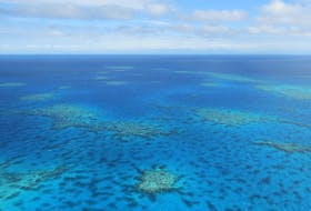 An aerial view of the Great Barrier Reef in Australia. The largest such ecosystem on the planet, almost two-thirds of it has been damaged or destroyed. STOCK IMAGE