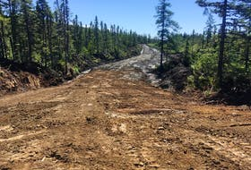 Upgrades to the snowmobile/ATV trail from Watson's Pond Road to the T'Railway will extend on work, pictured here, that the Western Sno-Riders, Newfoundland and Labrador Snowmobile Federation and the City of Corner Brook recently partnered to complete on the green tank trail located off Lundrigan Drive.
