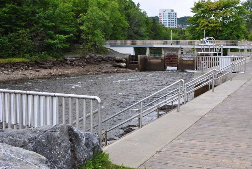 The gates on the dam have been lifted and the water from Corner Brook Stream once again flows freely through the swimming pool area of Margaret Bowater Park. The park pool closed for the season on Friday. The splash pad and washroom facilities at the park will remain open until Sept. 7.