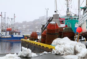 Crab pots piled on the wharf at the small boat basin on the south side of St. John's Harbour earlier this week. The start of year's snow crab fishery has been delayed to at least April 20. Glen Whiffen/The Telegram - Saltwire