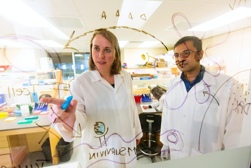 Marianne Stanford, vice president of research and development at Dartmouth-based IMV Inc. is shown with Arthvan Sharma from company's quality team. IMV announced on Wednesday that it is working on finding a vaccine to defeat the COVID-19 virus.