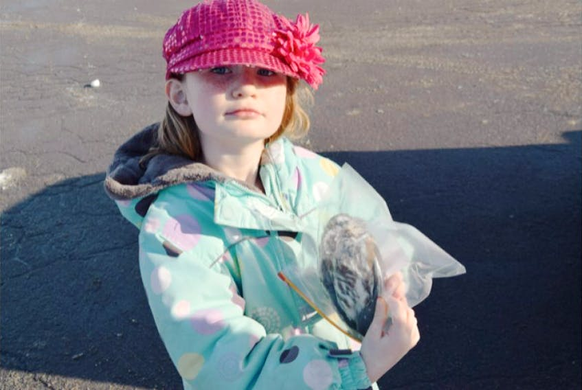 <span>Karis King holds an owl that her father found in the driveway in Stellarton Friday. She wanted to go with her dad to drop it off at DNR to determine how it died.</span>
