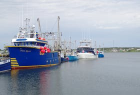 Fishing boats at Catalina, Trinity Bay. The owners of these fishing enterprises can now apply for a grant program announced by DFO to cover costs associated with the COVID-19 pandemic. Crew members are also eligible for a wage subsidy through a Fish Harvester Benefits Fund.