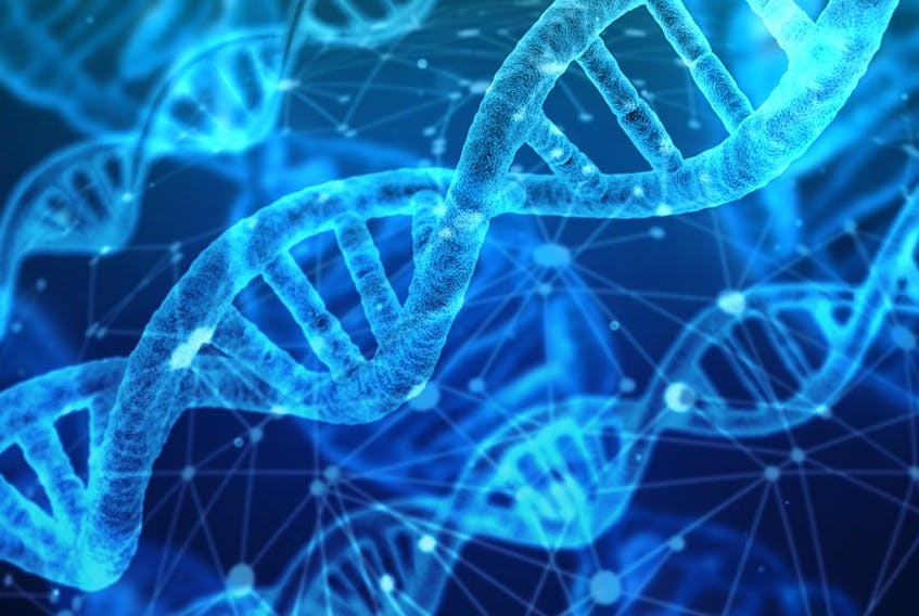 A microscopic image of DNA. — file photo
