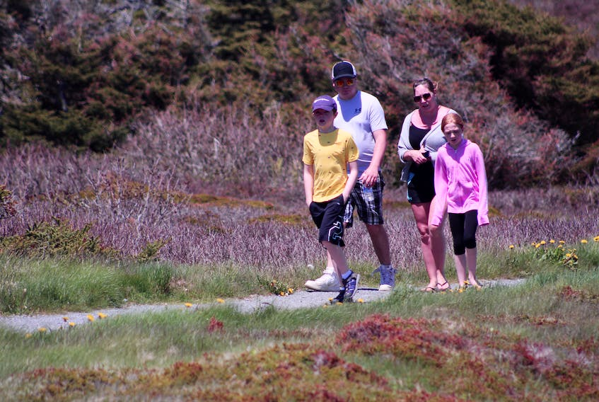 Chase MacIntyre, 11, walks ahead of his nine-year-old sister Dezira MacIntyre, his father Mason MacIntyre and his mother Rachel MacNeil as they near the end of their hike around the Lighthouse Trail in Louisbourg on June 17. Over the past few months, while playgrounds have been closed and activities like sports cancelled, the family has been hiking frequently. The family resides in Grand Mira South and along with frequenting the trails in that area, they hiked Cuties Hollow Fall in Antigonish after the first public health orders to stop the spread of COVID-19 were relaxed. NICOLE SULLIVAN/CAPE BRETON POST