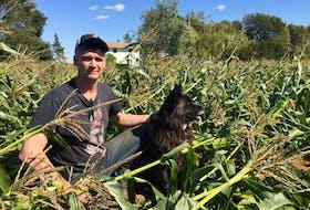 Kings County farmer Greg Gerrits.
