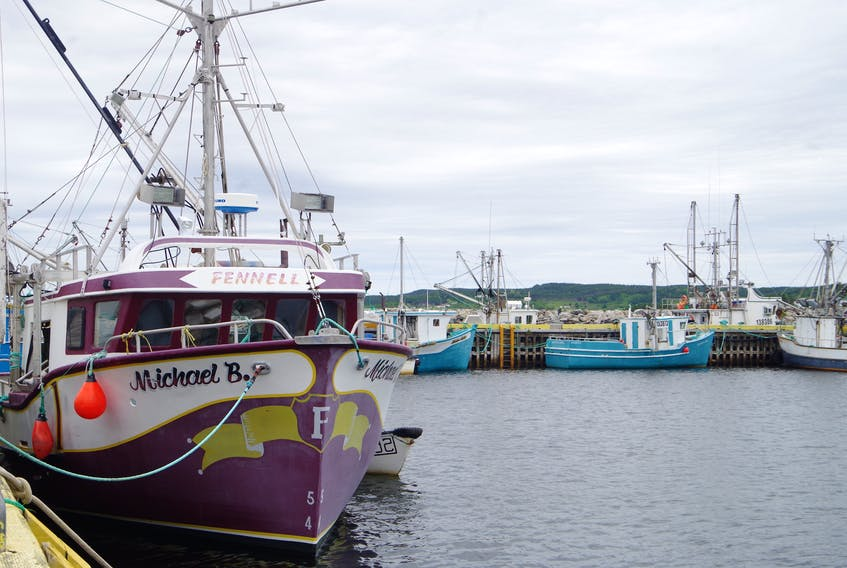 Inshore fishing boats in Summerville, Bonavista Bay. The fishermen who operate these smaller vessels depend on a little bit of everything — crab, lobster, caplin and cod — to earn an income during the fishing season.