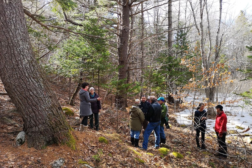 Equity members in the Treehouse Village Ecohousing development in the Town of Bridgewater get together on site for some conversation. Contributed