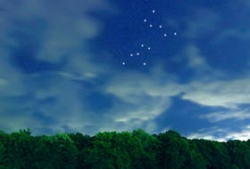 """The Canis Major star constellation seen in the night sky. There are two """"dog"""" constellations currently visible."""