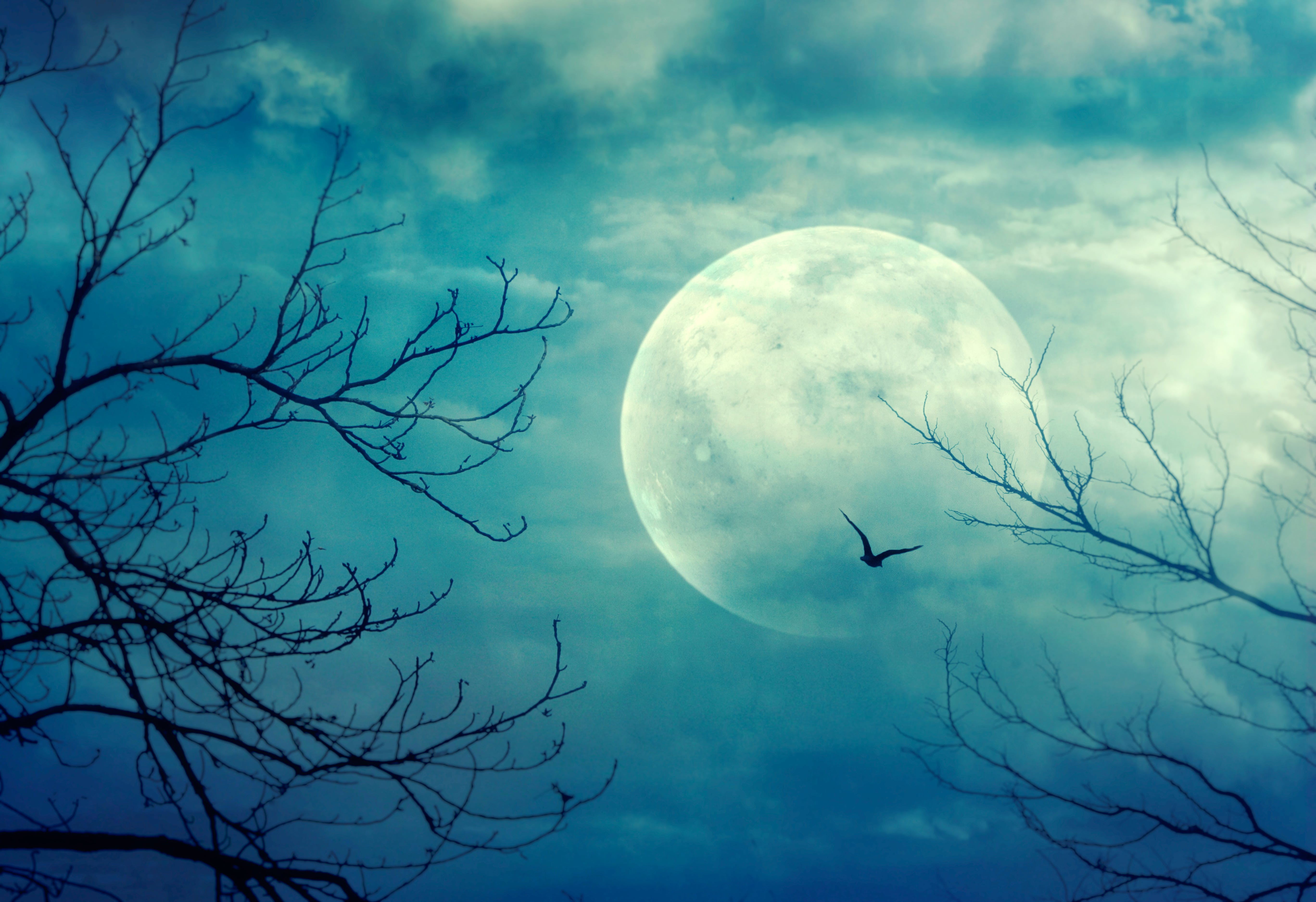 A full moon on Oct. 31 is quite rare, but trick-or-treaters will be able to look up and see one this year.