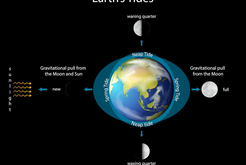 While most people know that the moon influences the Earth's tides, do you know how and why this happens?