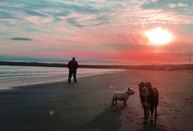 Explore all of the beauty that's right at your fingertips, writes Emilie Chiasson, who recently visited Crescent Beach in Nova Scotia.