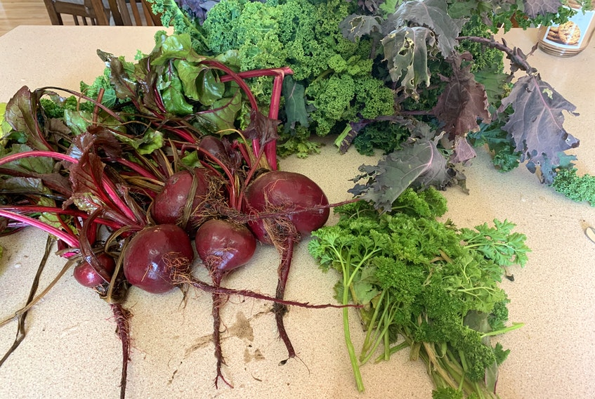 Becky Boutilier, a Red Seal horticulturalist in Head of Chezzetcook, N.S. says winter gardening doesn't just have to be inside. You can also harvest vegetables through the winter, like these veggies she gathered in early January.