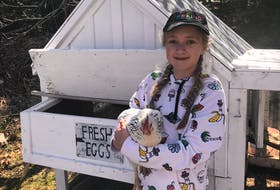 Meredith Parsons of Goulds, N.L., likes looking after the family's chickens. She is holding Snowy in the picture. Meredith wanted to get chickens after learning about chicken farming through 4-H.