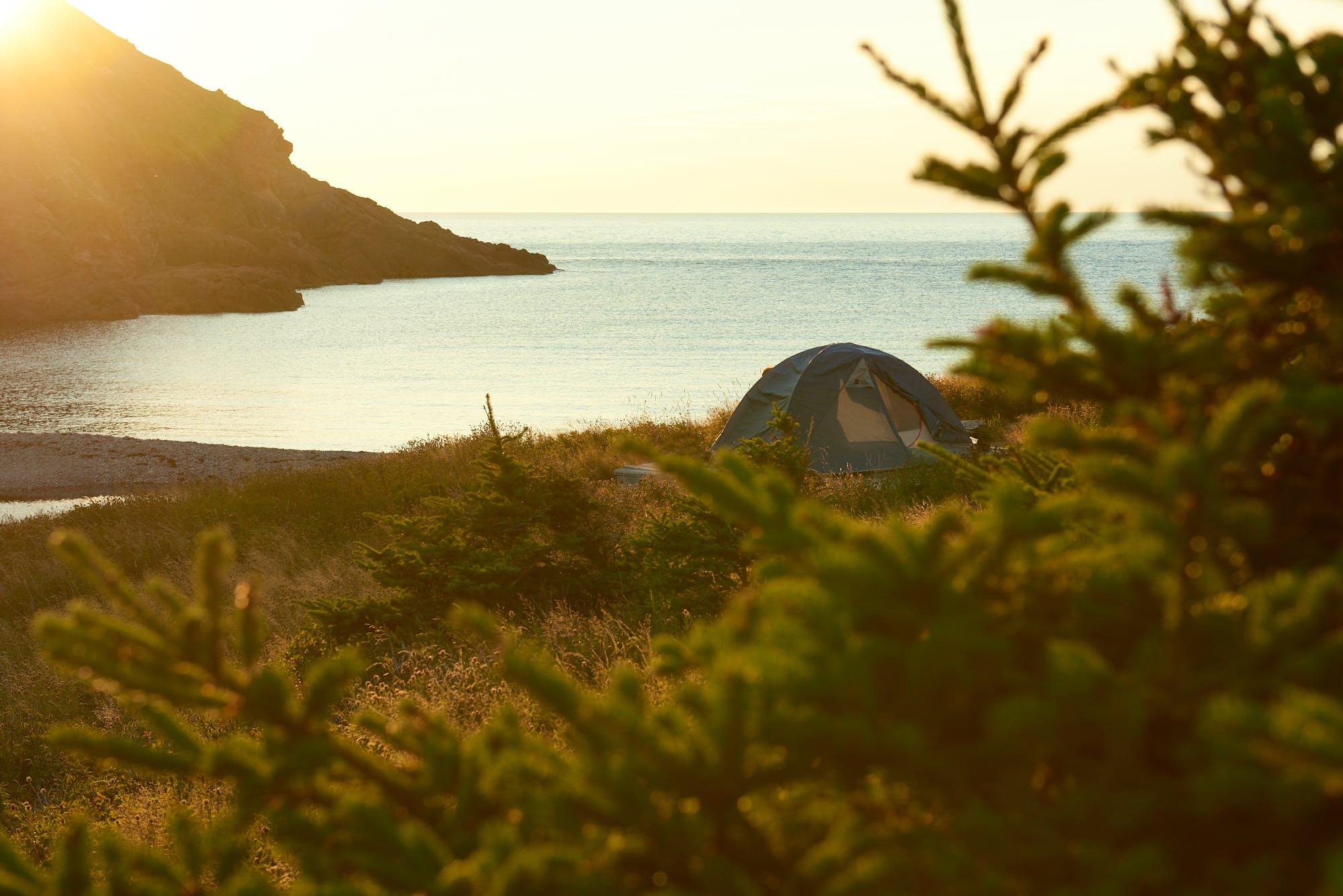 Fishing Cove at sunset. - Jason Nugent photo