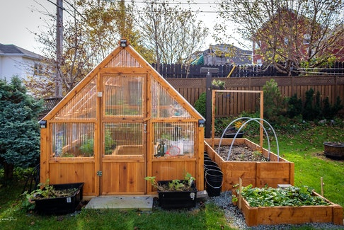 Sun Valley Greenhouses has noticed a massive increase in interest in greenhouse growing over the past year. Aubrey Dawe Photography