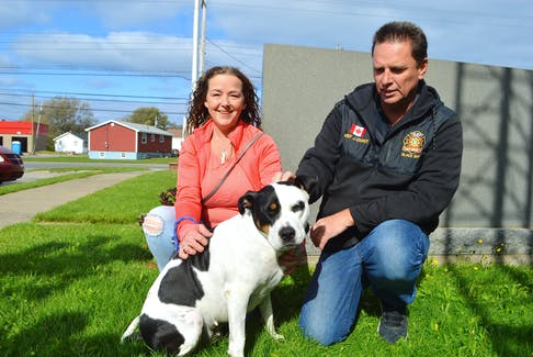 Tracy Power of Glace Bay with her mastiff Roxy and John Chant, chief of the Glace Bay Fire Department. Power said she's grateful to the firefighters who   rescued Roxy after she fell over a 50-foot   cliff in Glace Bay on Monday night. Sharon Montgomery-Dupe/Cape Breton Post