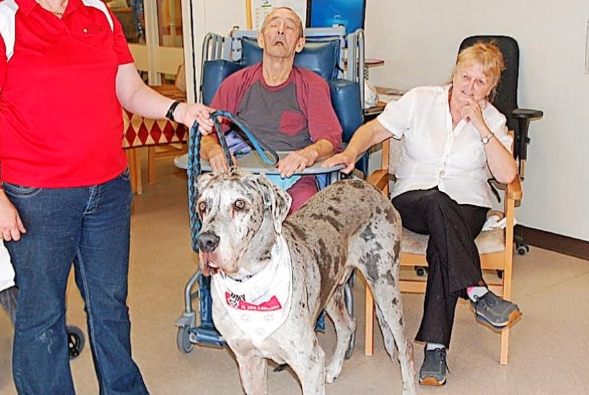 Isle Van der Merwe and her therapy dog Dante visited the long-term care residents at the Dr. Charles L. LeGrow Health Centre on Sept. 21. Here they are pictured with Harold and Dawna Melbourne.