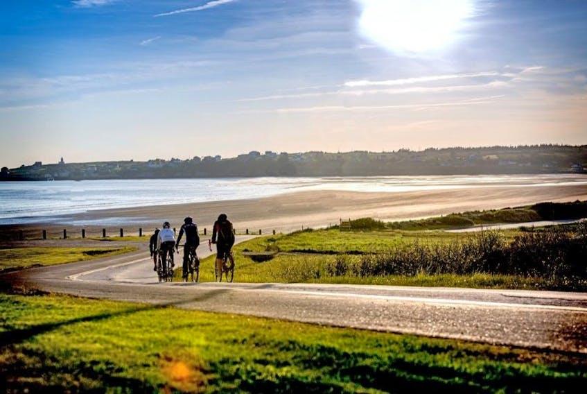 "<p class=""Default"">Cyclists head along the road behind Mavillette Beach.</p>"
