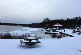 Gorge Park in Grand Falls-Windsor will see an expansion as the town moved to enter the design phase of an addition to the park during a recent council meeting. Nicholas Mercer/SaltWire Network
